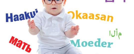 Build a Bilingual Baby!
